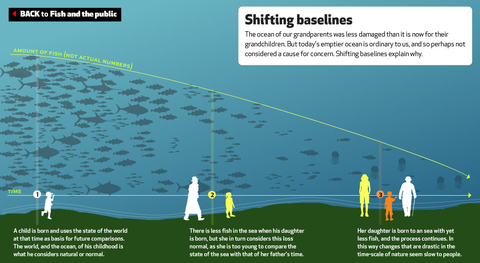 EyeOverFishing.org - Compare fisheries-14.jpg